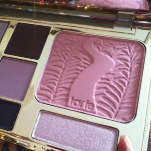 Tarte Energy Noir Clay Eye Shadow Palette Review