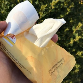 Burt's Bees Facial Cleansing Towelettes with White Tea Extract Review
